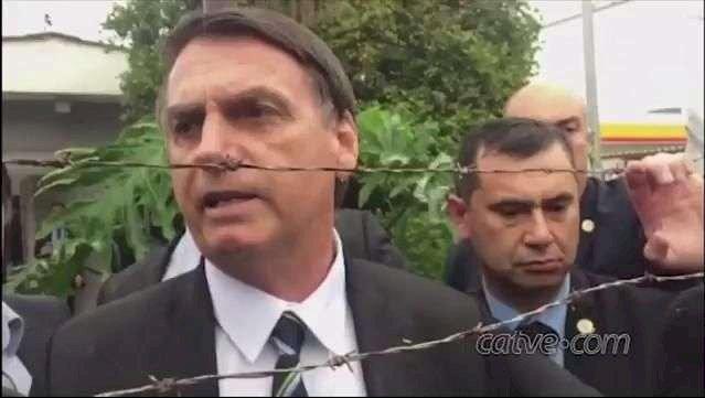 Bolsonaro recua e diz que não vai acusar países por compra de madeira ilegal