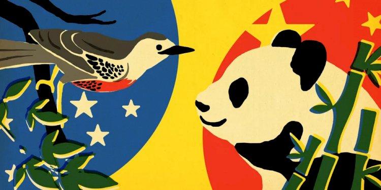 Parceria China-Brasil e as potências desperdiçadas